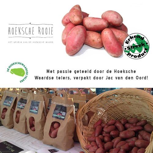 Hoeksche Rooie